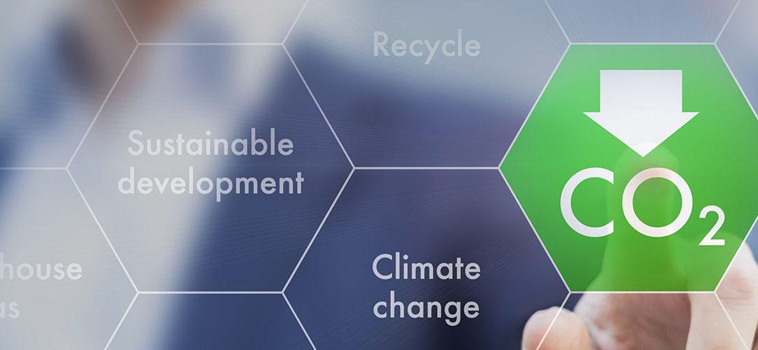 Manifesto ambientale 2020: il nostro impegno verso una produzione sostenibile