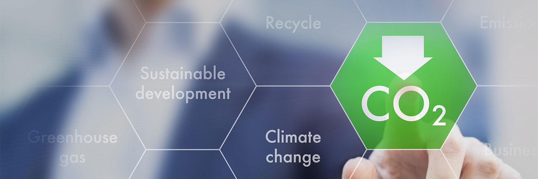 cop manifesto ambientale